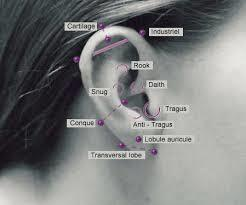 picture of cartilage piercing