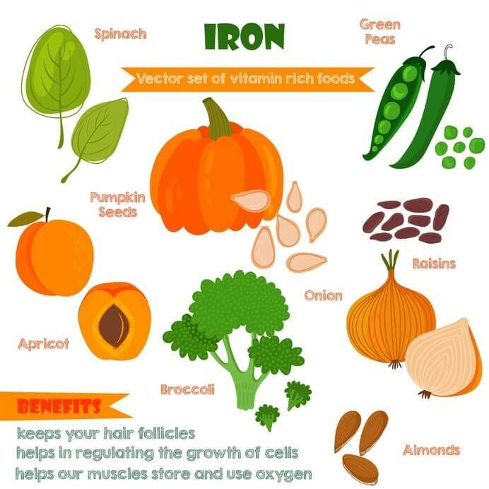 Iron Rich Foods Vegetarians