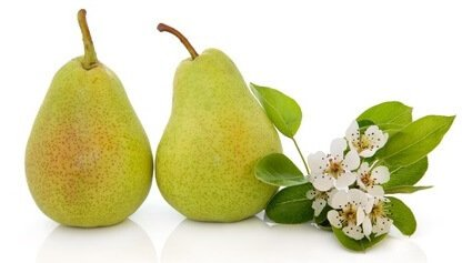 Pears lowers cholesterol