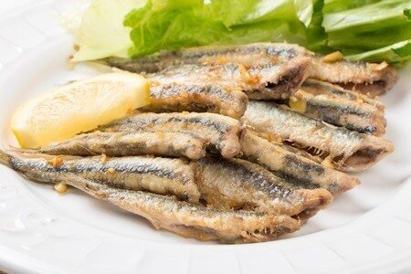 anchovies omega 3