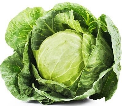 Cabbage Vitamin E