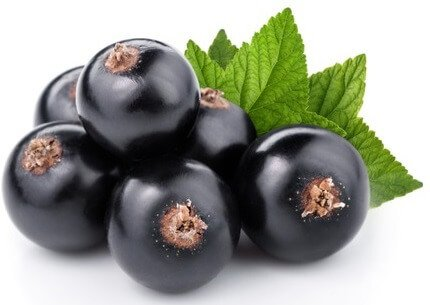 calcium in blackcurrants