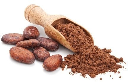 cocoa antioxidants
