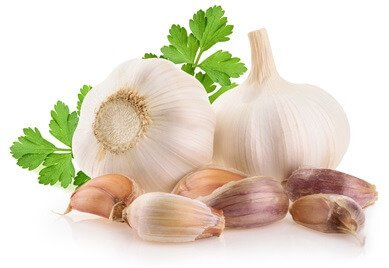 garlic antioxidant
